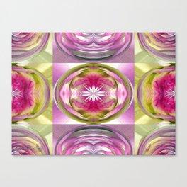 Star Elite Kaleidoscope Canvas Print