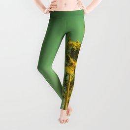 palm love in tropical green gold jewel tones Leggings