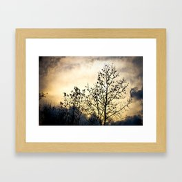 Birds Sitting On A Tree Framed Art Print