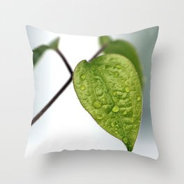 Raindrop Leaves Throw Pillow