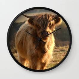 Young Highland Cow Wall Clock
