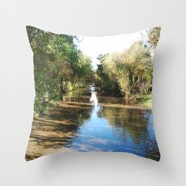 Copeland Creek 2012-11-28 Throw Pillow