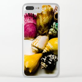 Summer Shell Collection Clear iPhone Case