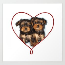Heart Yorkshire Terrier Puppies Art Print