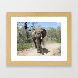 Elephants of Africa Framed Art Print