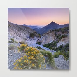 Spring flowers. Piornos. River Dilar Valley. Sunset at the mountains.  Metal Print