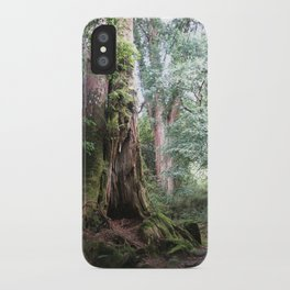 Ancient Tree iPhone Case