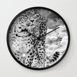 Persian Leopard Wall Clock