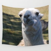 llama Wall Tapestries featuring Llama by Sarah Shanely Photography