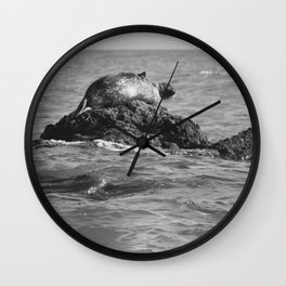 Mr. Happy Sea Lion Number 1: Sassy On A Rock In Black And White Wall Clock