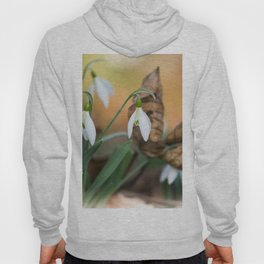 Opposites new and old in the garden Hoody