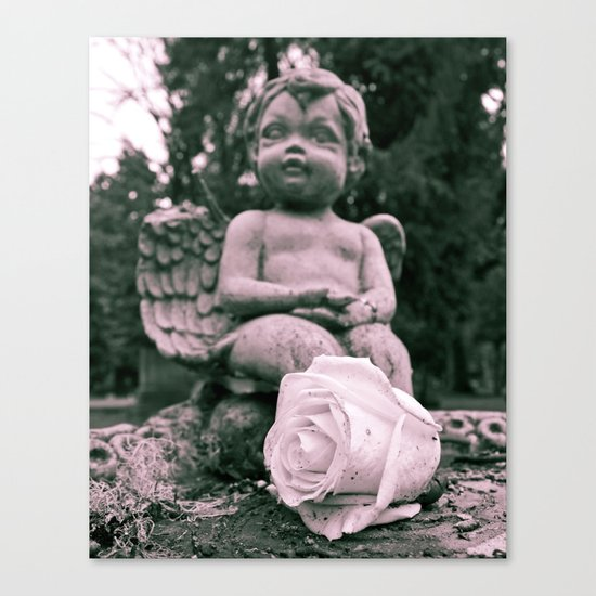 Cherub and rose Canvas Print