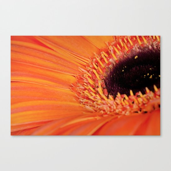 Its bloomin' orange Canvas Print