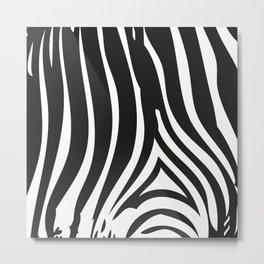 Zebra Stripes   Black and White Metal Print