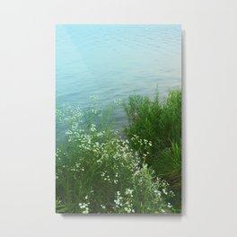 Still Waters Metal Print