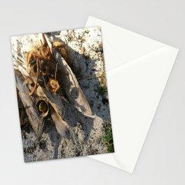 Ambiance Macré 2 . Le lion des sables se réveille doucement Stationery Cards