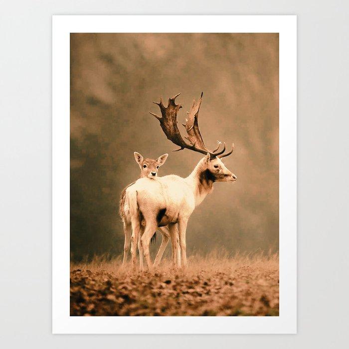 Deer 3 Art Print