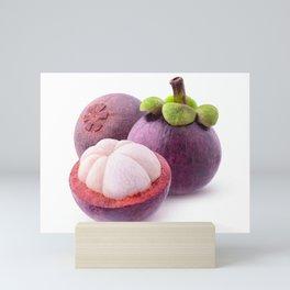 Cut mangosteens Mini Art Print