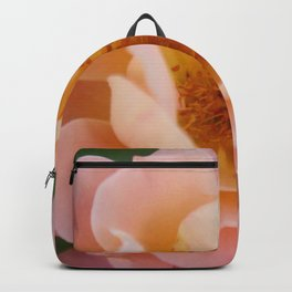 Powder Pink Colored Rose Backpack