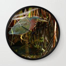 Beautiful Green Heron Wall Clock