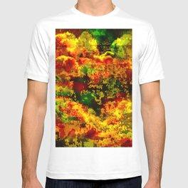 C13D Distressed T-shirt