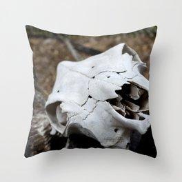 Desert Skull Throw Pillow