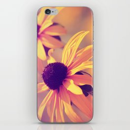 Yellow Flower - Rudbeckia iPhone Skin