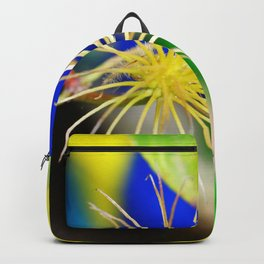 Clematis bloom is gone Backpack