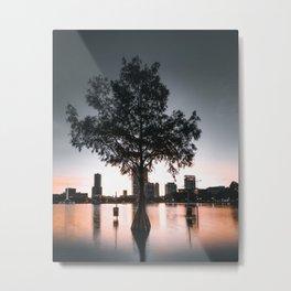 Lake Eola Metal Print