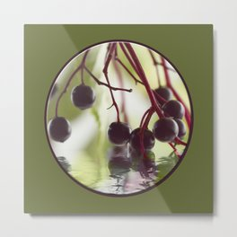 Elderberry Metal Print