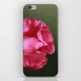 Botanical Background, Pink Flower, Summer Flower iPhone Skin