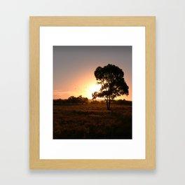 Evening Golden Landscape Framed Art Print