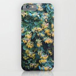 Honeysuckle Flowers – Golden Showers iPhone Case