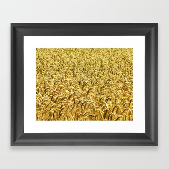 Golden Wheat Framed Art Print