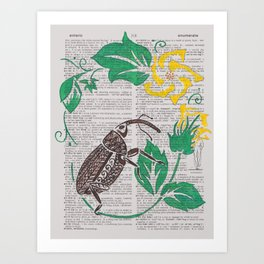 I Shall Fear No Weevil   (Boll Weevil and Cotton Blossoms) Art Print
