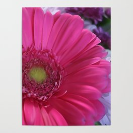 Floral Bouquet Pink And Purple Poster