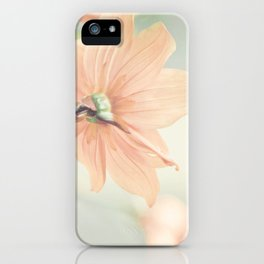 Noonday Dreams iPhone Case