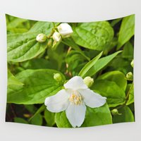 jasmine Wall Tapestries featuring Wild Sicilian Jasmine by CAPTAINSILVA