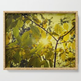 Aged Golden Leaves Autumn Botanical / Nature Photograph Serving Tray