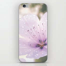 Plum Blossoms iPhone Skin