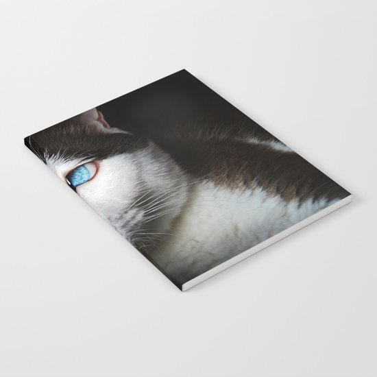 Cat siamese blue eyes Notebook