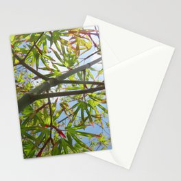 Green leaves blue sky Stationery Cards