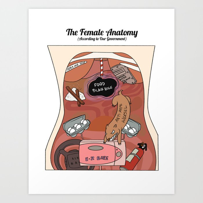 Female Anatomy Chart According To Our Government Art Print By