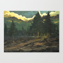 into dark forest Canvas Print
