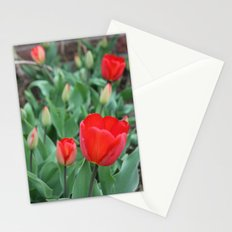 Tulip Darlings Stationery Cards