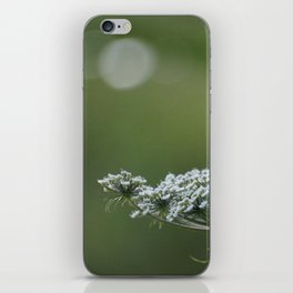 Evening flower iPhone Skin