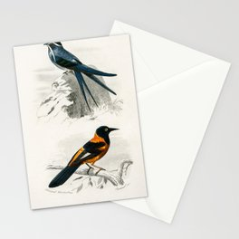 Vintage Print - Universal Dictionary of Natural History (1849) - Orioles: Moustached; Black-Hooded Stationery Cards