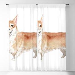 Cute Corgi dog breed illustration Blackout Curtain