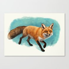Fox walk Canvas Print
