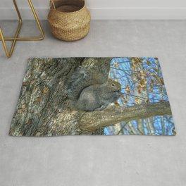 Grey Squirrel In Winter. Rug